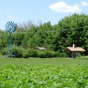 2010.07.14. - Pihenőpark